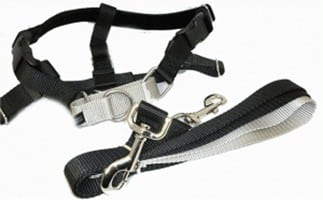 Top 8 Freedom No Pull Harness 2019 Reviews Vreviewbestseller
