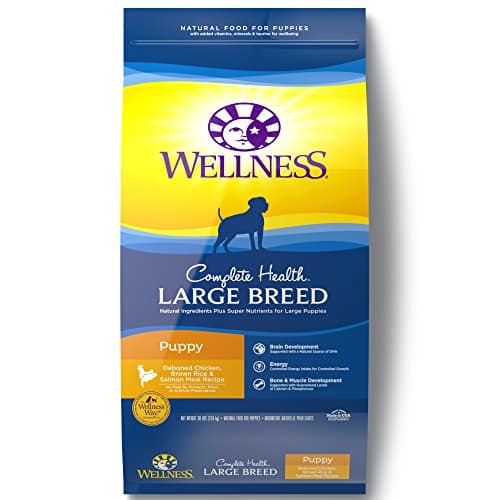 Top 8 Best Large Breed Puppy Foods 2019 Reviews • vReviewBestseller