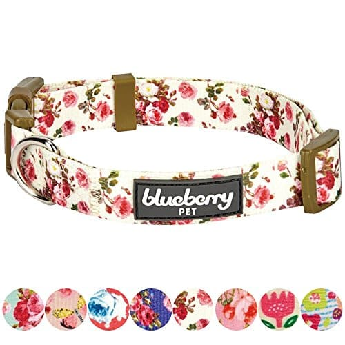 Blueberry Pet Spring Scent Floral Collection- Regular, Personalized Collars and Seatbelts for Dogs.