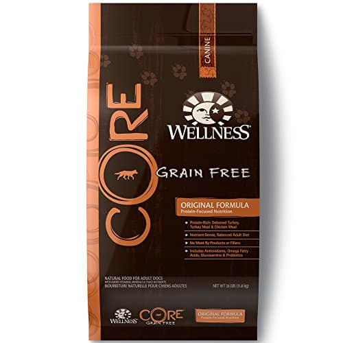 Wellness Core Natural Grain Dry Dog Food