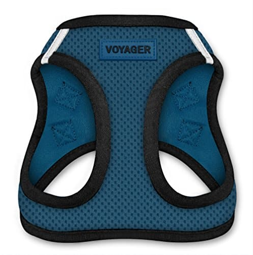 Voyager All Weather Harness