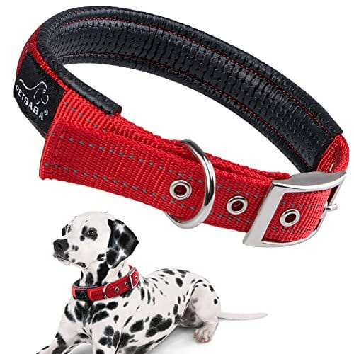 PETBABAB Soft Padded Dog Collar