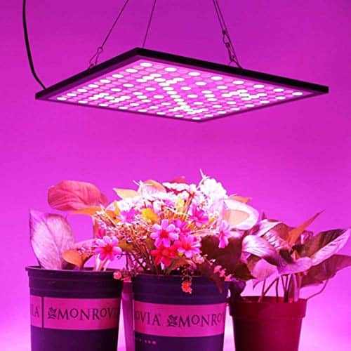 HNHC 45W Indoor Full Spectrum Hang Lamp
