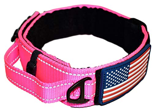 Diezel Pet Products Dog Collar with Control Handle Quick Release